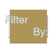 filterbynew.png