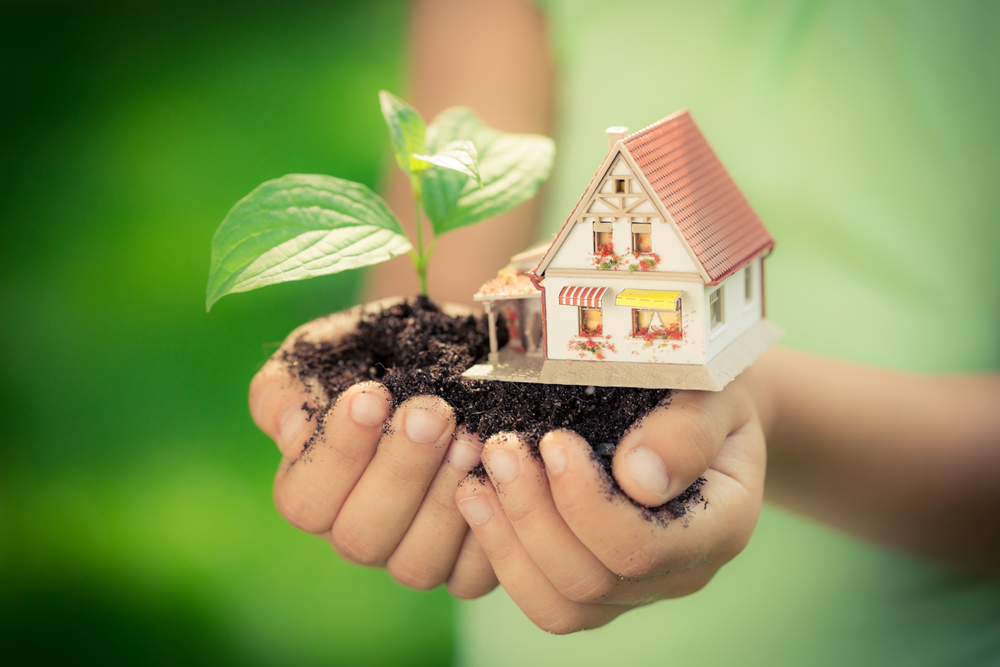 Child's hands holding a house and plant - green moving solutions
