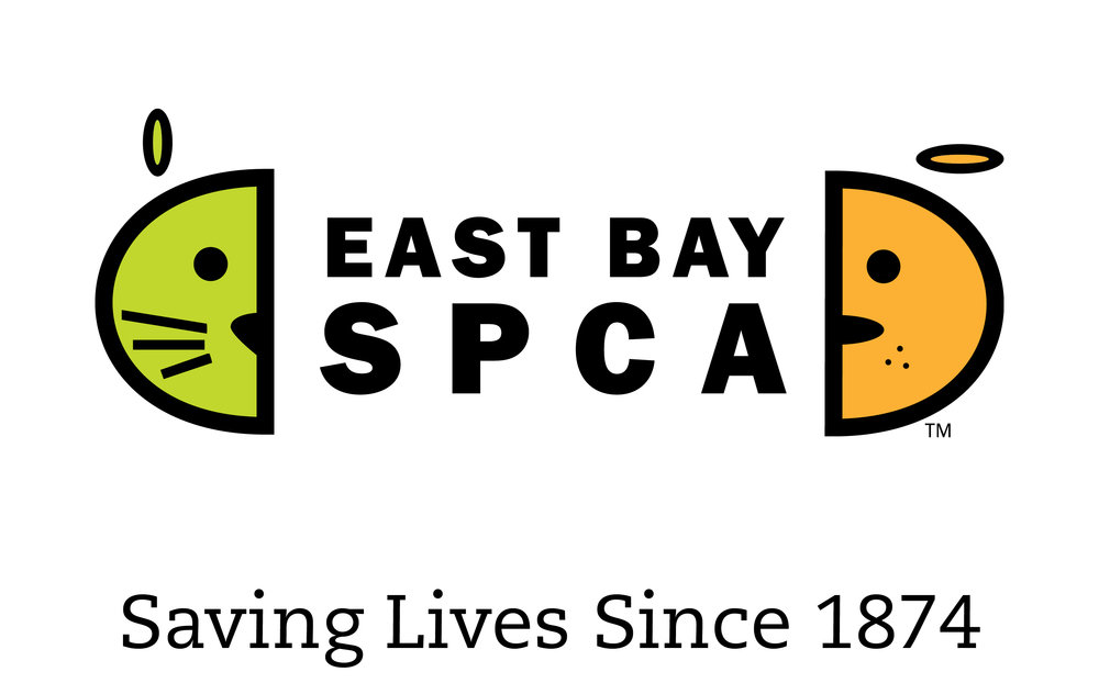 Berkeley, CA - East Bay SPCA