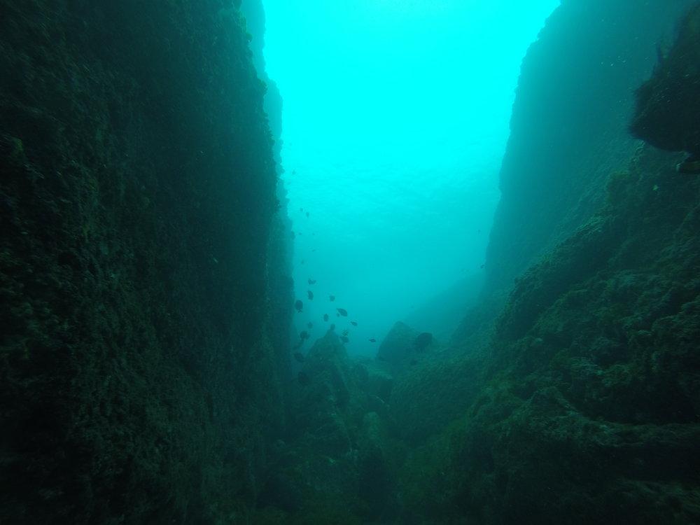 海底峽谷,海中也是有各式各樣的地形喔