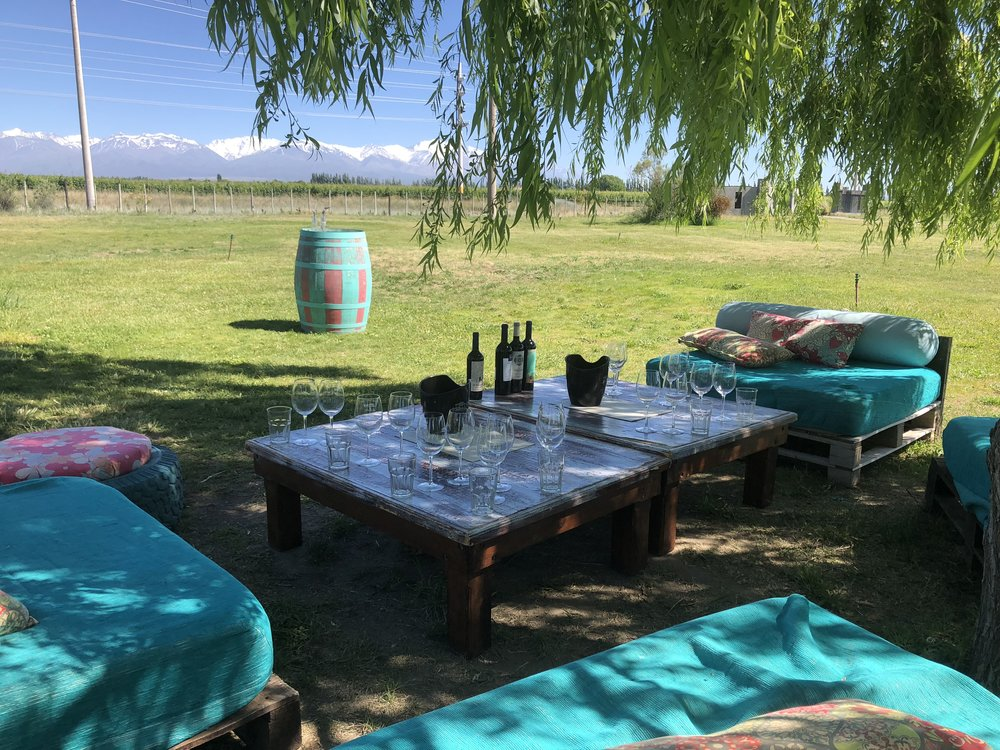 Wine in the shade at Bodega La Azul