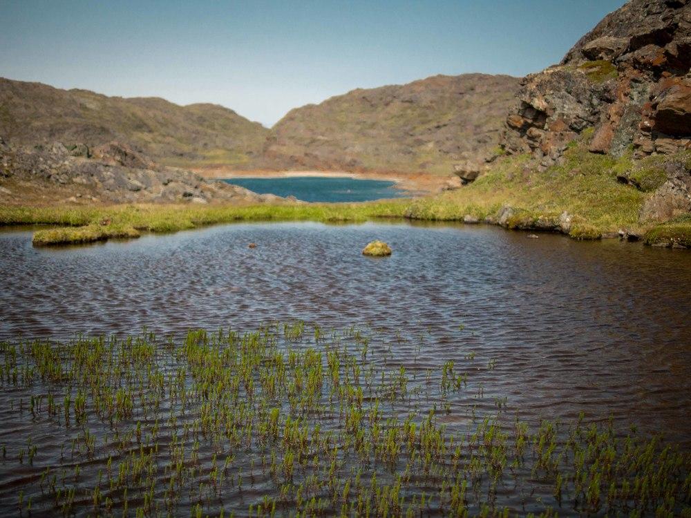 Freshwater basin.