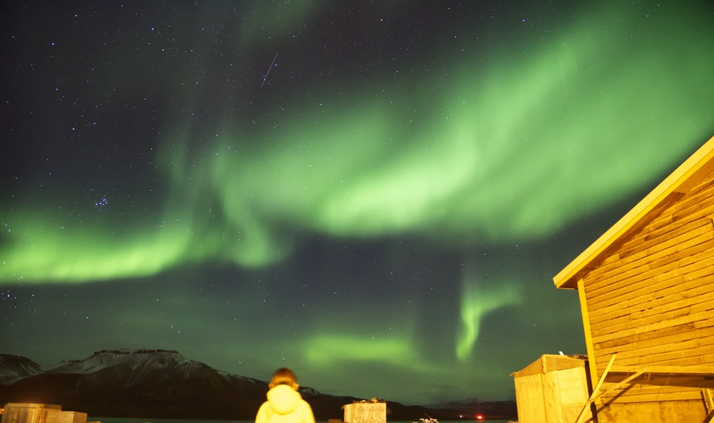 The aurora over Arctic Bay. Photo by Clare Kines,