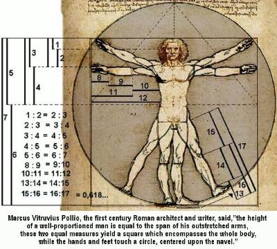 daVinci-man fibonacci man.jpg