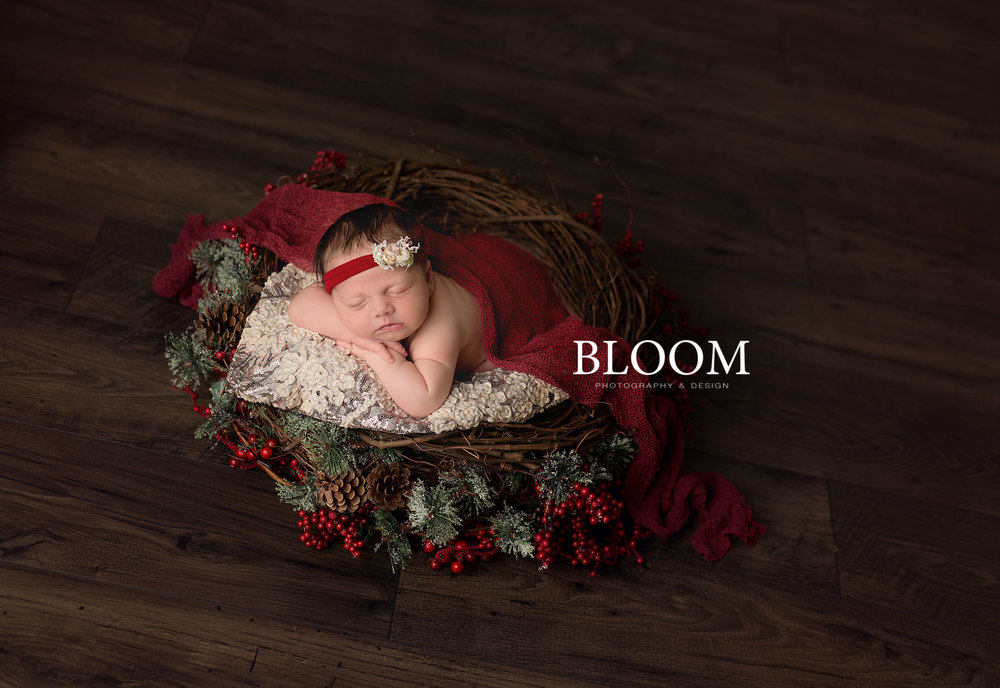NMM_6753_Morgan-San-Antonio-Newborn-Photographer-Texas-Photography-Bloom-Norma_121515.jpg