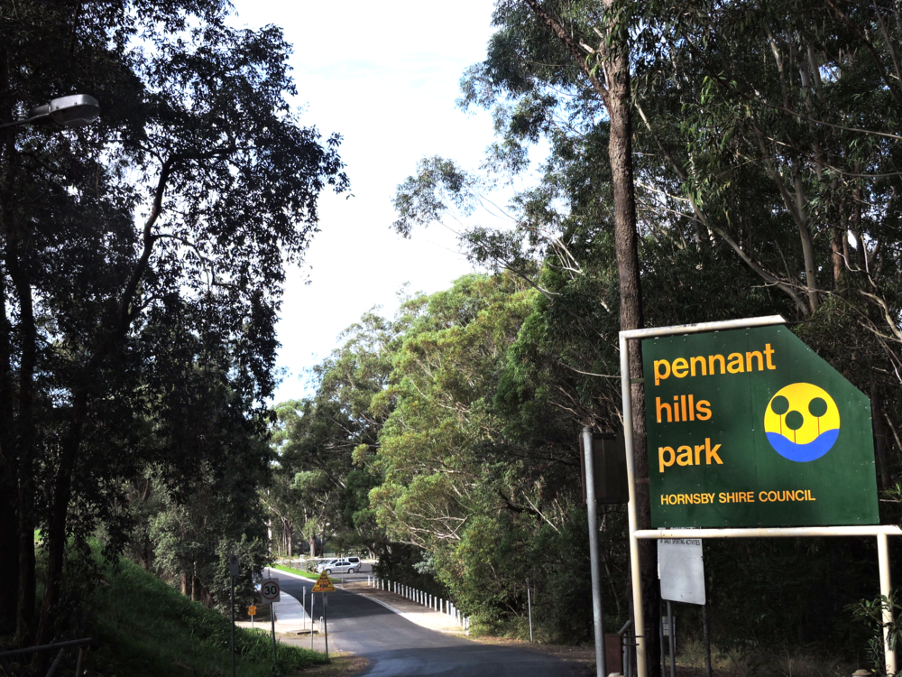 Pennant Hills Suburb Profile