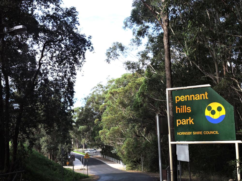 Pennant Hills Suburb Profile