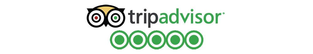 squamish mountain bike lessons review tripadvisor.jpg
