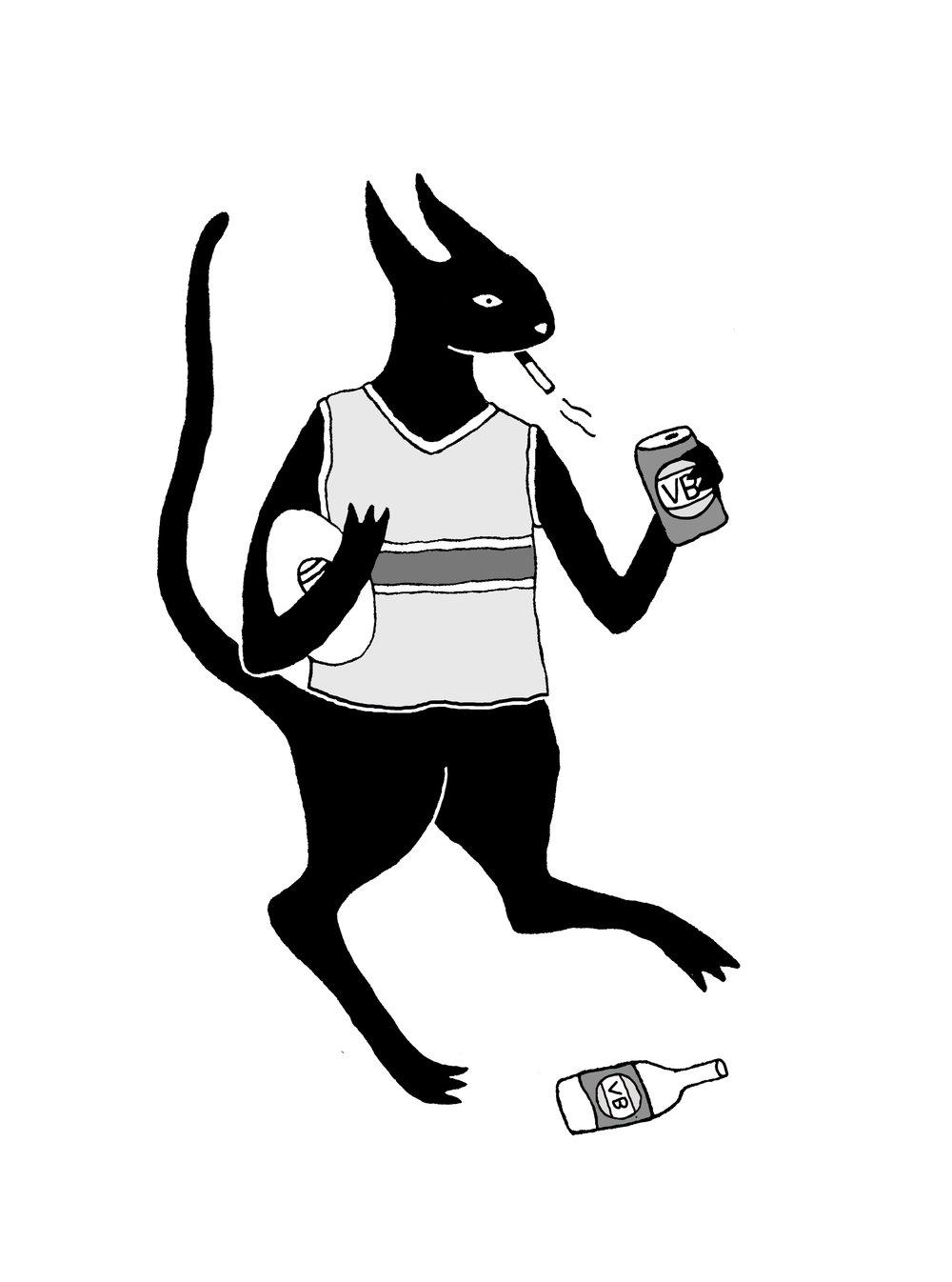 Cat Footy Coulor .jpg