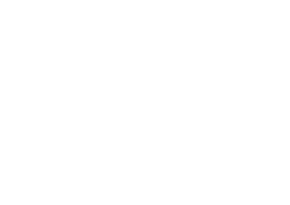 Double Dutch Fries