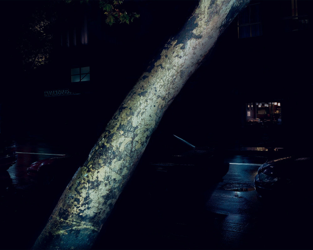 63 Darlinghurst Road, Sydney 2008. C-Type Print 80cm x 100cm © Alan McFetridge