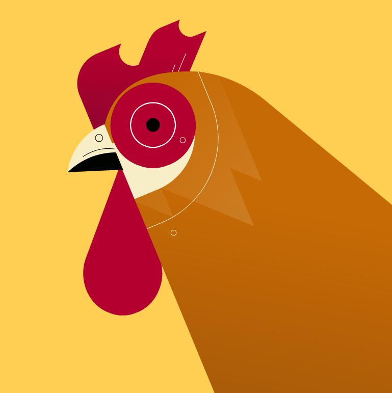 Chicken 01.PNG