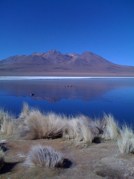 Reserva Nacional de Fauna Andina Eduardo Avaroa, Potosí, Bolivia