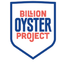 Billion-Oyster.png