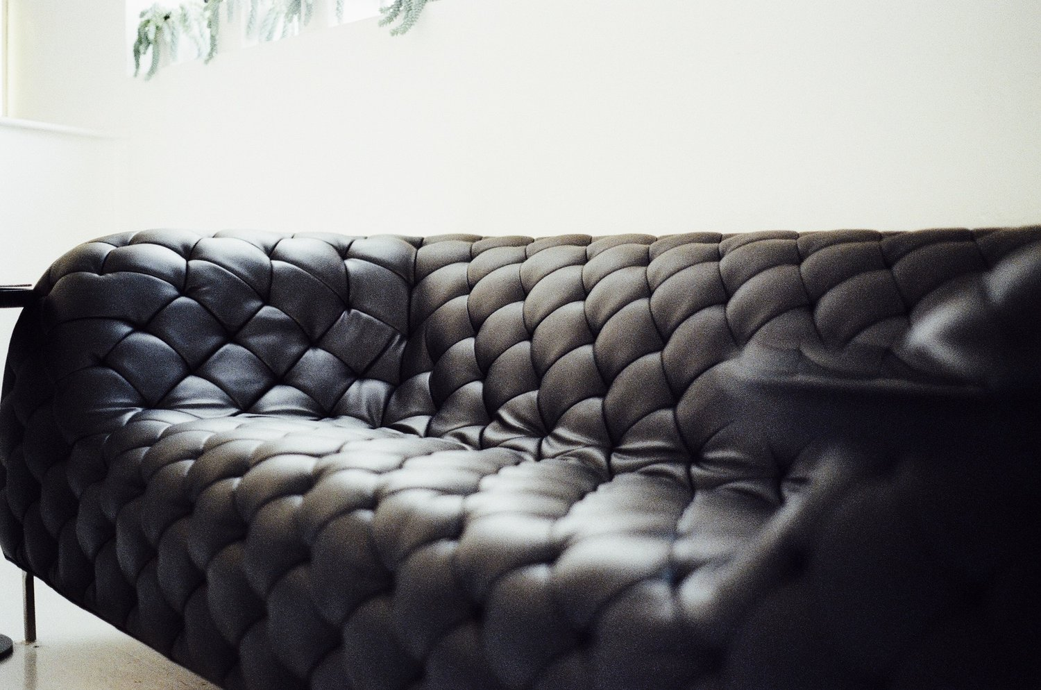 The Fascinating History Behind Leather Couches