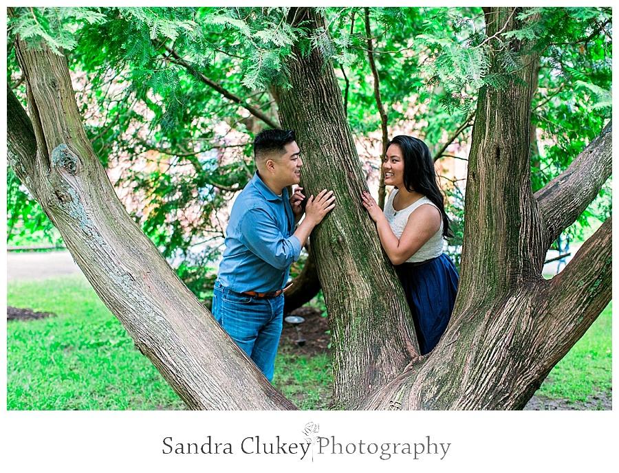 Peeking around the tree