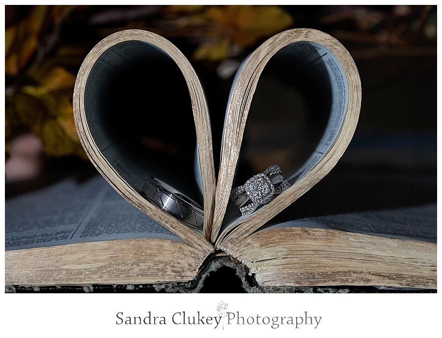Wedding Rings in Bible
