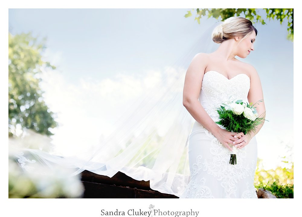 Tennessee RiverPlace Bride, Chattanooga TN