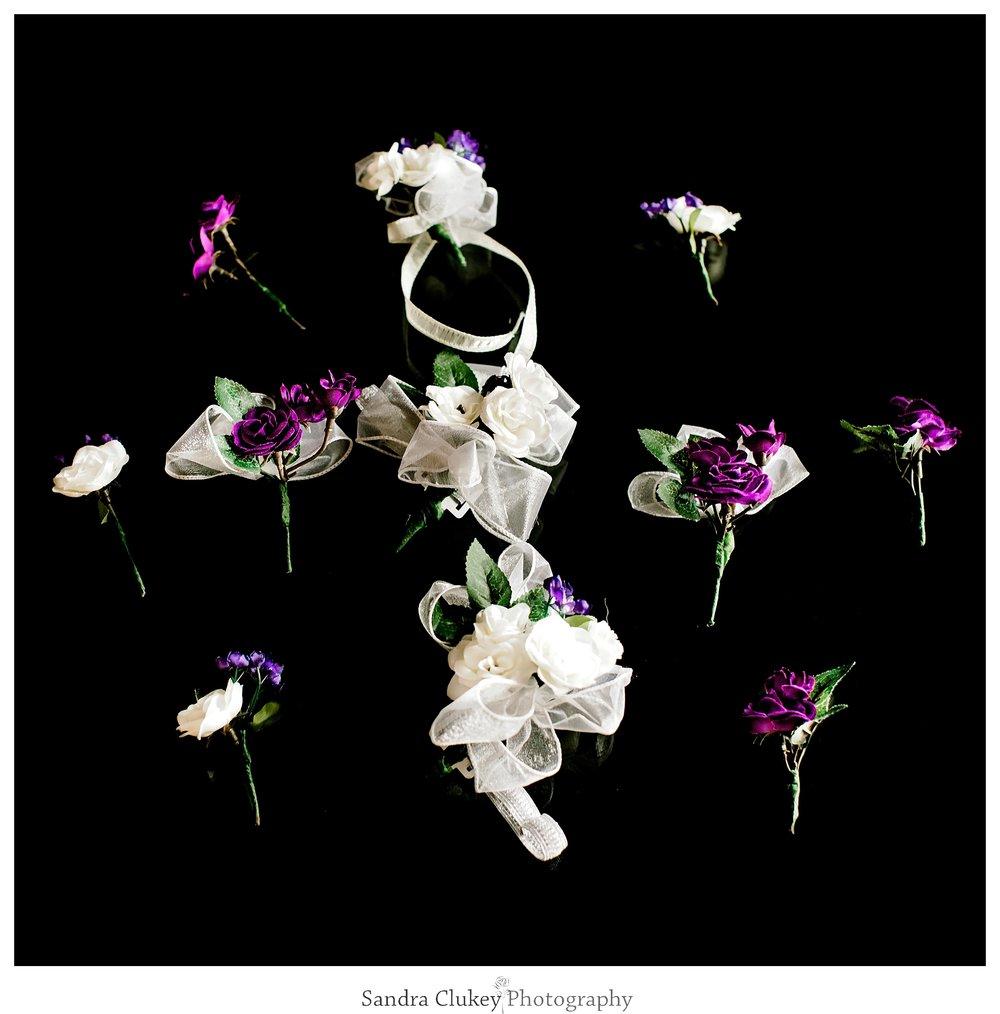 Sandra Clukey Photography_1834.jpg