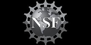 NSF300100.png