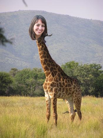 Giraffe bri2.png