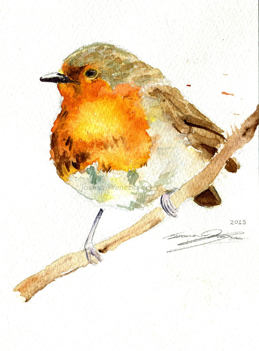 Loose Robin