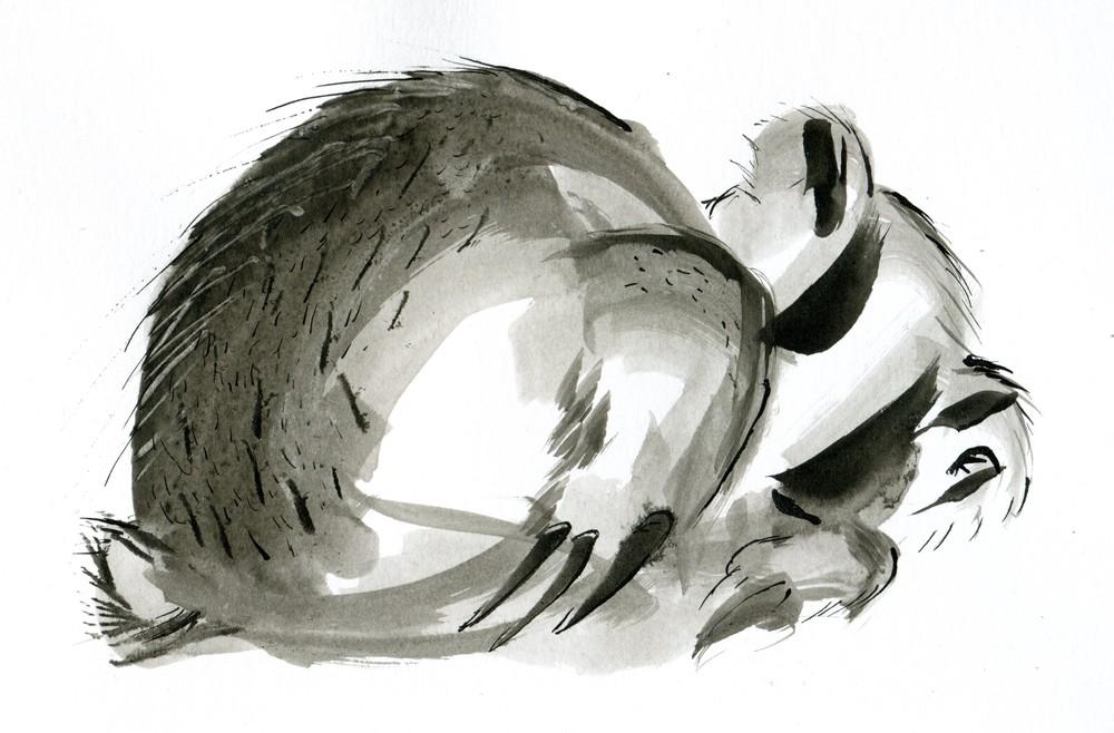 AV_Logo001.jpg