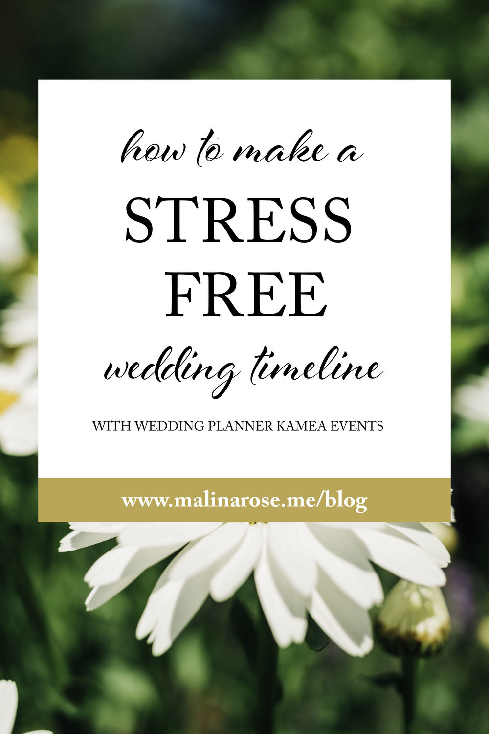How To Make A Stress Free Wedding Timeline With Wedding Planner