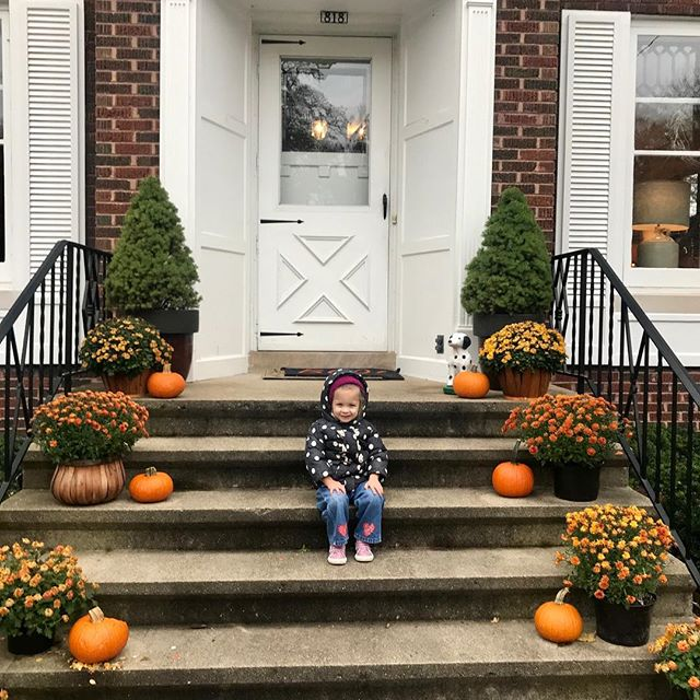 This little pumpkin....🎃 !! 😍😍