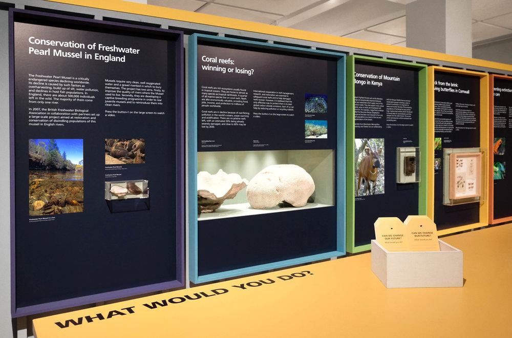 Margot_Lombaert_ManchesterMuseum_11.jpg