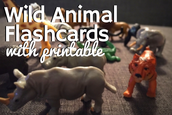 Wild Animal Flashcards
