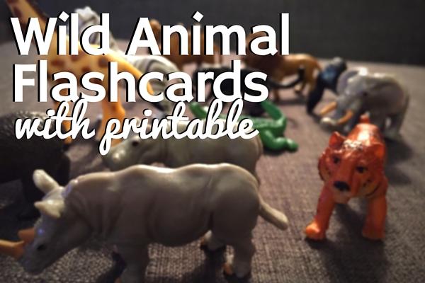 Wild Animal Flashcards