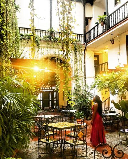 Hotel Marqués de Prado Ameno.