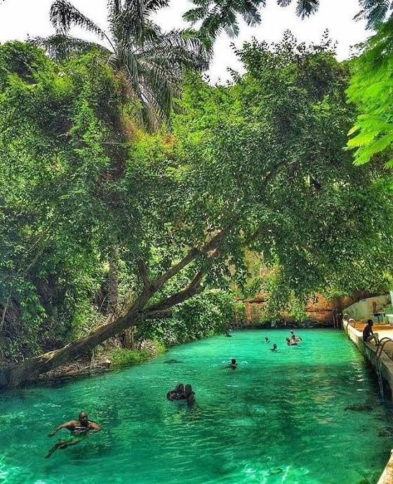 Yankari Game Reserve in Bauchi @tripzapp