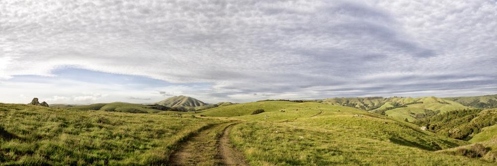 elizabeth-fenwick-photography-painterly-point-reyes-olema-elephant-moutain-bolinas-ridge-ca-sky-lines-.jpg