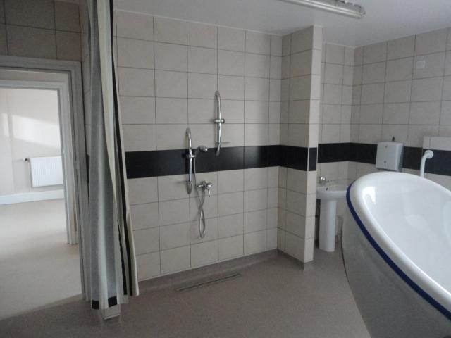 disabled wet room design