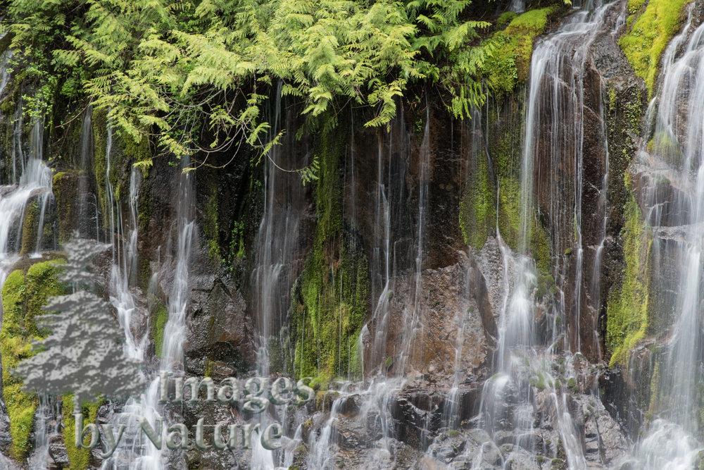 Landscape_Waterfalls_PantherCreekFalls_WA_05_WEB-2.JPG