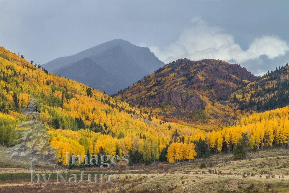 Landscape_Mountain_Fall_PhantomCanyonRoad_CO_04_WEB.JPG