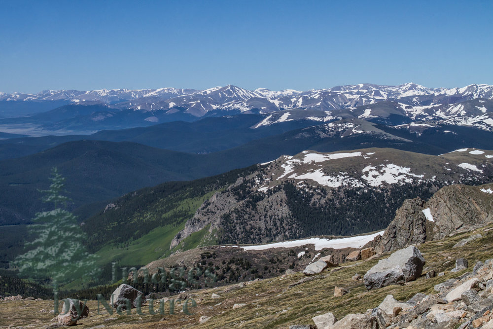 Landscape_Mountain_MtEvans_CO_02_WEB.JPG