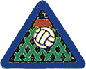 Cub Scout Volleyball Sports Pin