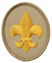 ScoutBadge.png
