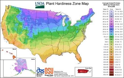 US Growing Zones.jpg