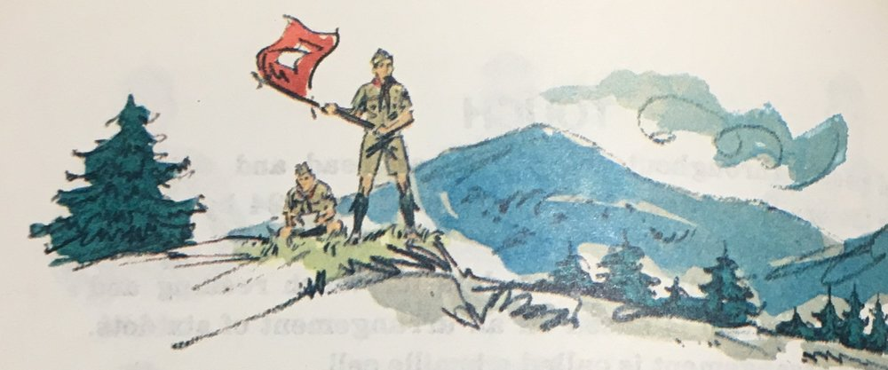 Scout Flag Signaling