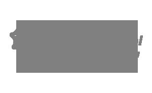 laser-logo.png