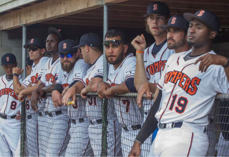 The Stompers are on a roll after three weeks of play in the Pacific Association.   Robbi Pengelly/Sonoma Index-Tribune