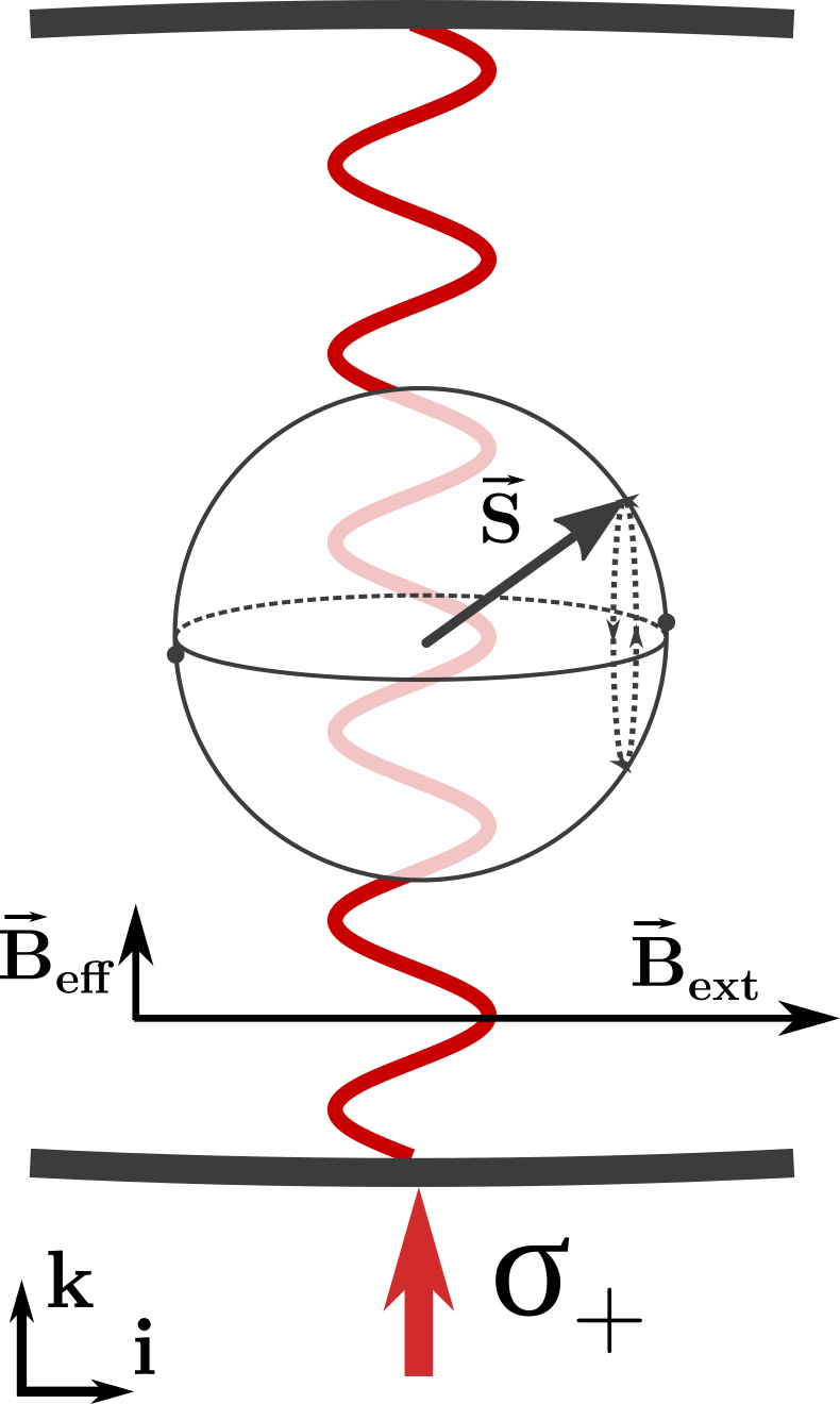 Conceptual diagram of a spin oscillator interacting with the probe laser