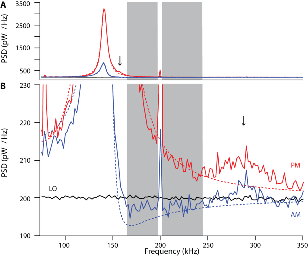 Power spectral densities of optomechanical response on a full scale  (A)  and magnified about the region of shot noise  (B) , in the phase-modulation (PM; red) and amplitude-modulation (AM; blue) quadratures (solid, data; dashed, theory).
