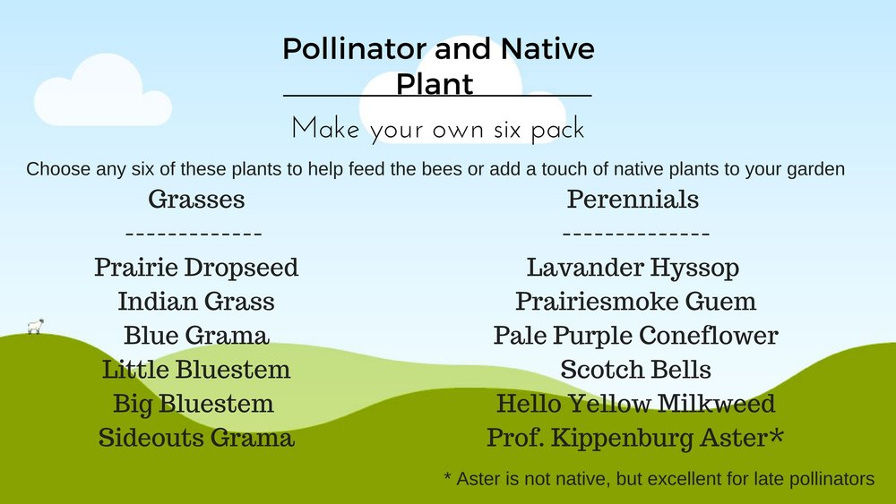 Our Pollinator / Native Program (Click to enlarge)