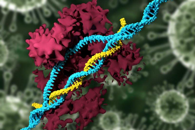 CRISPRMIT.jpg