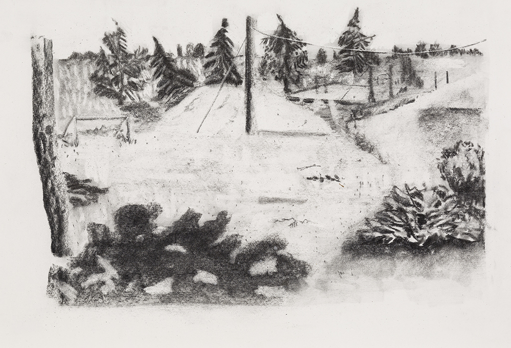 St-Barnabé sud, charcoal on paper, 15x21 inches, 2014